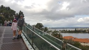 Tree top walk in Kings Park